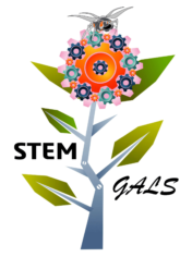 STEM Gals